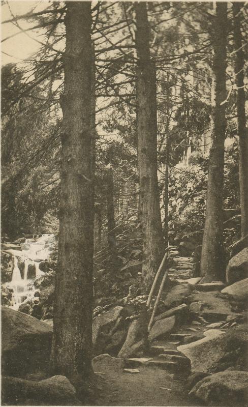 Felsenstieg vor dem Hotel, Ansichtskarte um 1930, Postkartenverlag Rud. Lohse, Halberstadt